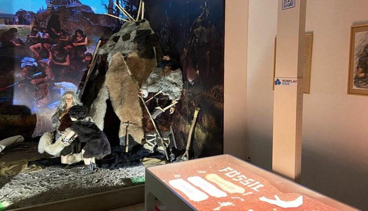 В музее-заповеднике «Костенки» теперь можно раскопать скелет мамонта