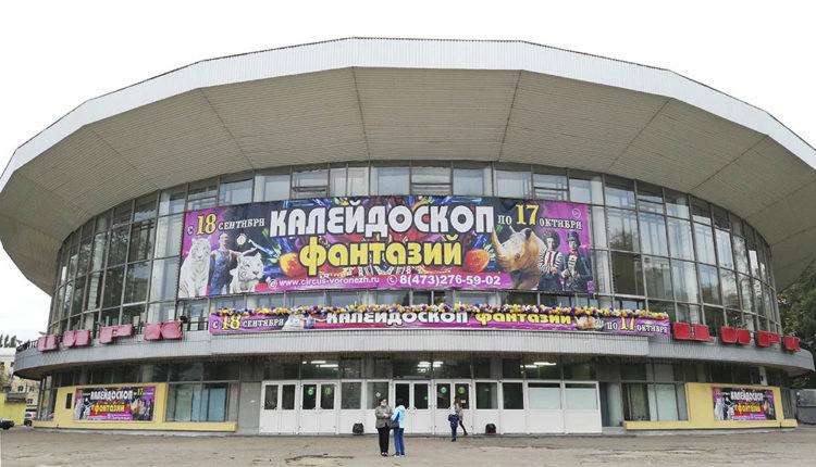 Воронежский цирк отменил представления 16 и 17 октября